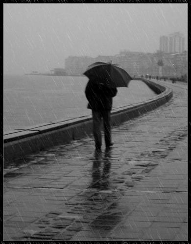 No importa que la estación entrara oficialmente un mes antes, porque ahora  las tardes parecen más tristes. Anochece antes, hay algunas lluvias, ...